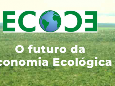 O futuro da Economia Ecológica (ciclo de webinars)